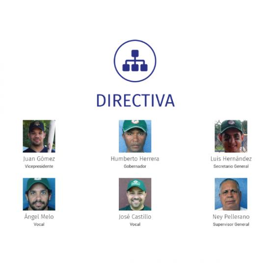 Web Design & Development   Liga del Oeste